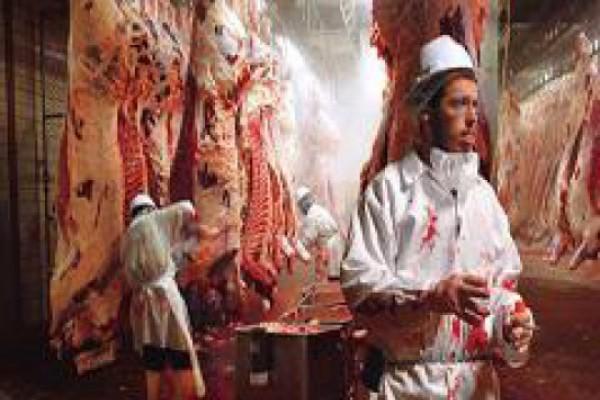 ხორცისა და პურის გაიაფების იმედიც კი არ არის, შანსი მით უმეტეს