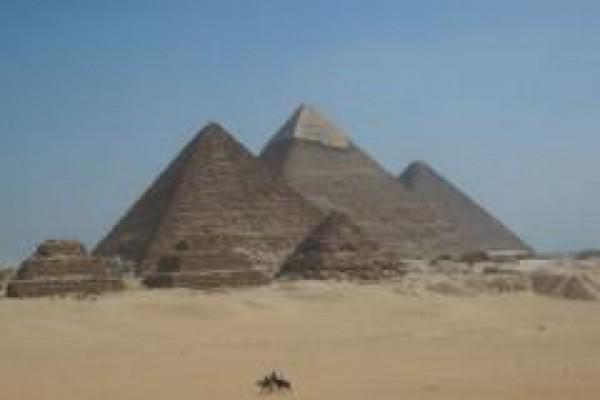 უკან ეგვიპტეში