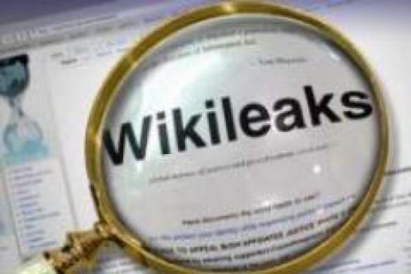 "wikileaks - ""სკანდალების კარტოთეკა"""
