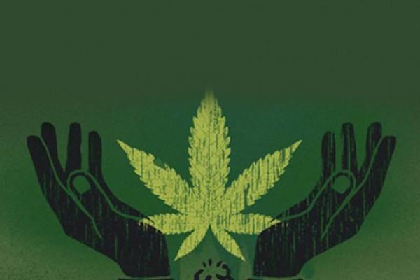Ноггано не кури марихуану слушать конопля для плотвы
