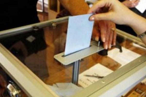 სადამკვირვებლო ორგანიზაციები რამდენიმე ოლქში  არჩევნების შედეგების გაუქმებას ითხოვენ