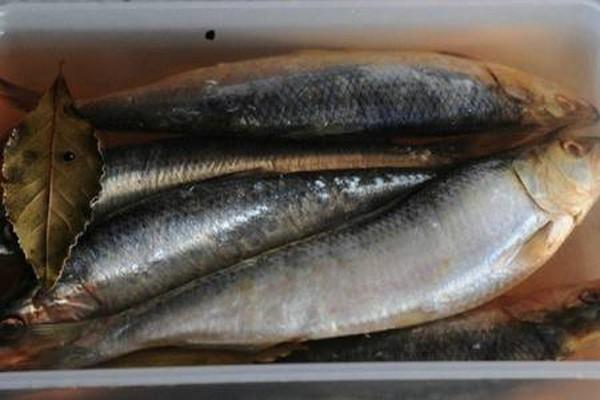 სახლში მომზადებული თევზის მარინადი, რომელიც 10-ჯერ ჯობს ნაყიდს!
