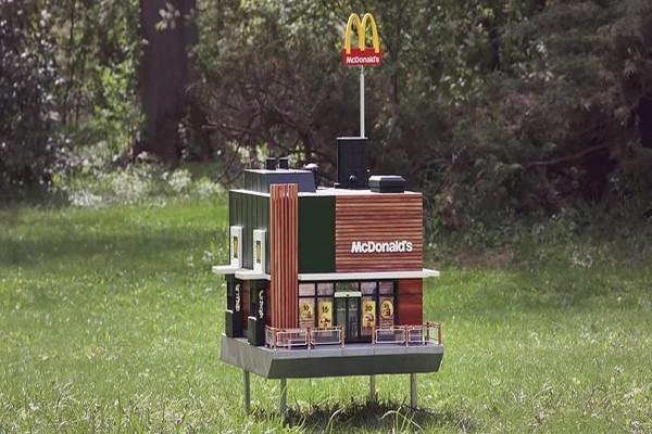 მაკდონალდსმა ფუტკრებისთვის მსოფლიოს ყველაზე პატარა რესტორანი გახსნა