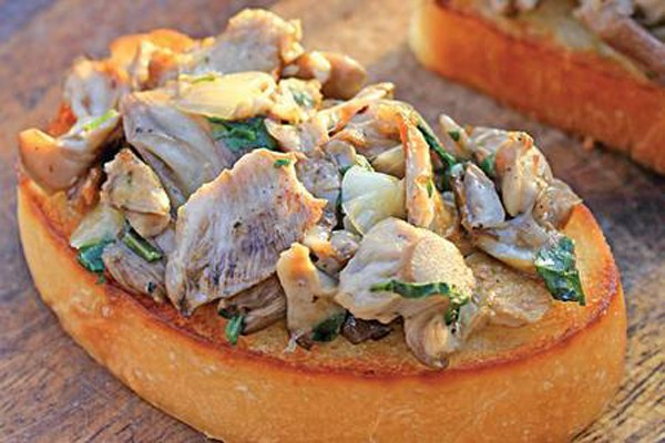 ხის სოკო პიტნით - ძალიან უხდება გახუხული პური