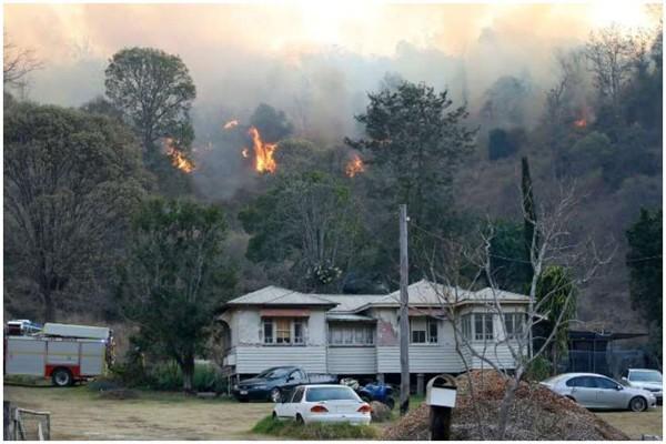 ავსტრალიის ორ შტატში ტყის ხანძრებს ებრძვიან