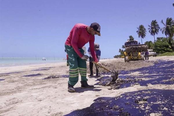 ბრაზილიის პლაჟები სამ დღეში 525 ტონა ნავთობისგან გაწმინდეს