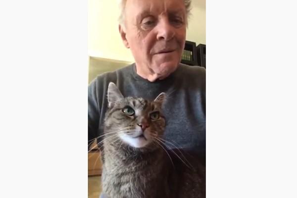 ენტონი ჰოპკინსმა საყვარელ კატას მუსიკა მიუძღვნა  (ვიდეო)