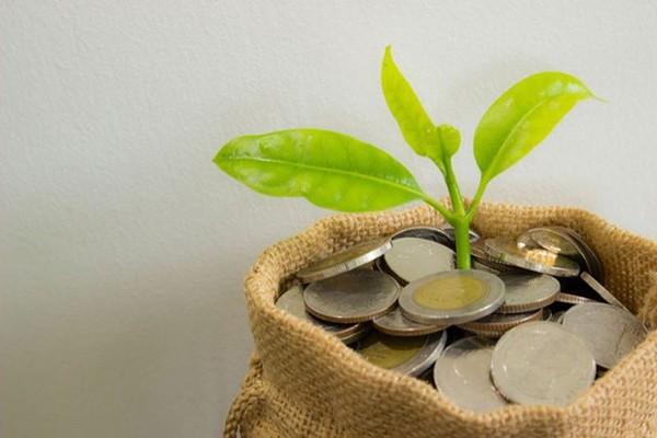 რას უნდა მოახმაროს მთავრობამ 2 მილიარდი ლარი, რომ ეკონომიკა არ ჩამოიშალოს?