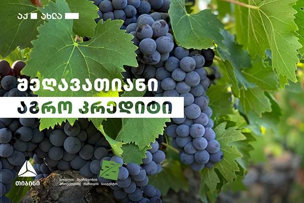 """თიბისი ღვინის საწარმოებს პროექტ """"შეღავათიანი აგროკრედიტის"""