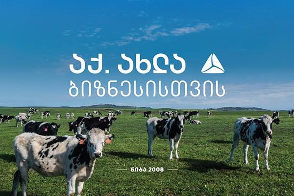 """""""ნიბა"""" რძის წარმოებას აფართოვებს"""