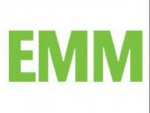 emim-araemociuri-gadawyvetileba-miiRo