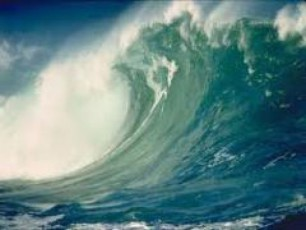iaponelebs-cunamis-naxva-filmebSic-ar-surT