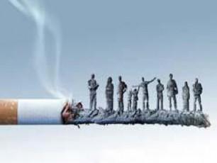 reklama-uintereso-gaxda-sareklamo-bazari---indiferentuli