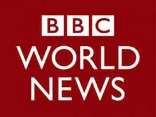 BBCs-TanamSromlebma-gaficva-daiwyes