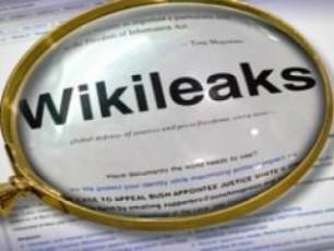 gamofxizleba-Wikileaks-iT