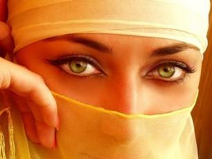 arabi-qalebi-gaxdilebis-winaaRmdeg