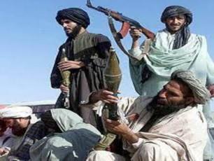 pakistanis-al-qaidas-kidev-erTi-lideri-daakaves