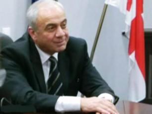 nacionalebi-senakis-maJoritarad-gubernator-guram-misabiSvilis-wardgenas-gegmaven