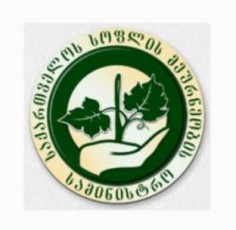 qarTuli-delegaciis-moskovSi-viziti-gadaido