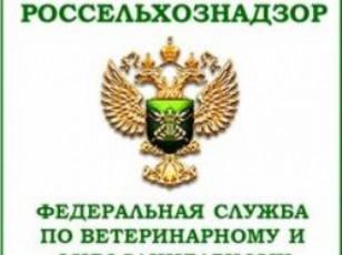 rosselxoznadzoris-delegacia-saeqsporto-partiebis-formirebis-process-gaecno