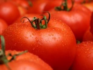 aucileblia-icodeT-ras-miirTmevT---marneulis-sasursaTo-qarxnis-mier-warmoebuli-tomat-pasta-100-procentiT-naturaluri