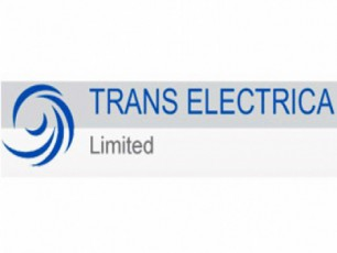 kompania-trans-eleqtrika-jorjias-gancxadeba