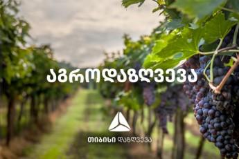 agrodazRveva-fermerebs-stiqiuri-movlenebisgan-icavs