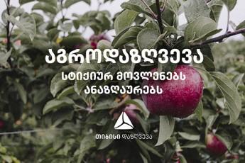 Tibisi-dazRveva-fermerebs-setyvis-Sedegad-miyenebul-zians-aunazRaurebs