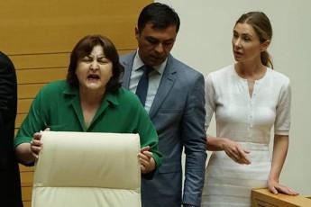 parlamentis-foieSi-ada-marSaniasa-da-Tina-bokuCavas-Soris-Selaparakeba-moxda