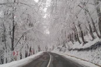 Tbilisis-garda-mTel-aRmosavleT-saqarTveloSi-Tovs---temperatura--8-gradusamde-davardeba