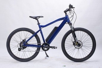 sad-SeviZinoT-velosipedebi