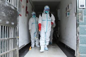 estoneTsa-da-daniaSi-koronavirusis-pirveli-SemTxvevebi-dafiqsirda---daavadebuli-arian-Jurnalisti-da-iranis-moqalaqe