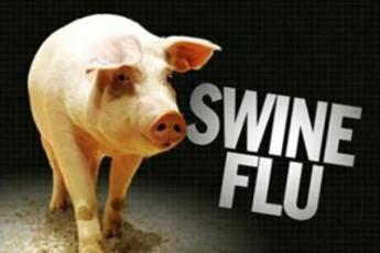 Roris-gripi---xelovnurad-Seqmnili-virusi