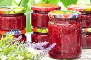 aromatuli-Jolos-jemi-zamTrisTvis---ase-momzadebuli-jemi-cocxali-Jolos-gemosa-da-fers-inarCunebs