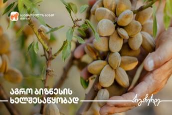 saqarTvelos-banki-mcire-da-saSualo-bizness-axal-agroproeqts-sTavazobs