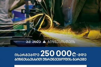 250-000-laramde-uzrunvelyofis-gareSe-sesxiT-sargebloba-nebismieri-profilis-bizness-SeuZlia