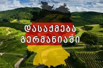 germaniaSi-dasaqmebis-programam-daadastura-rom-ekonomikurad-aqtiur-mosaxleobas-gaqcevaze-uWiravs-Tvali