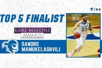 sandro-mamukelaSvili-karl-melounis-saxelobis-prizis-finalistia