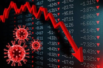 udidesi-vardna-ianvarSi-ekonomika-bolomde-CaiZira