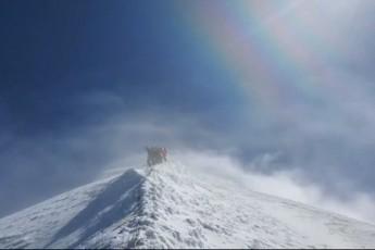 naxeT-rogor-avidnen-zRvis-donidan-4858-metrze---ulamazesi-kadrebi-TeTnuldidan-video
