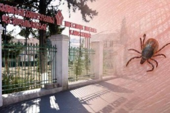 axali-safrTxe---vin-aris-qali-romelsac-yirim-kongo-da-koronavirusi-erTdroulad-daudasturda-da-saswrafod-TbilisSi-gadmoiyvanes